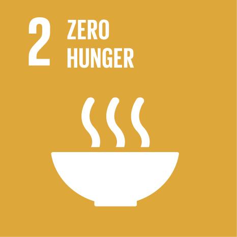 """""""SDG2"""""""